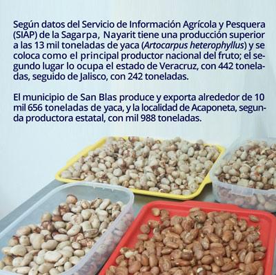 1 semillas0802
