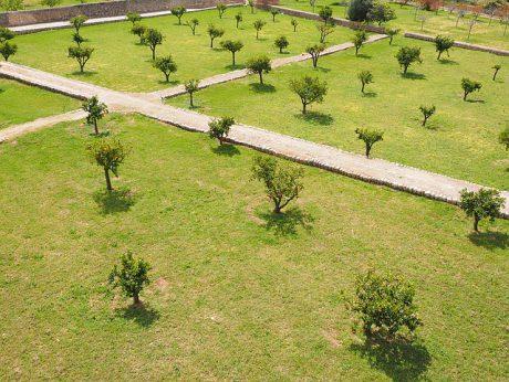 Muestreo de suelos con fines de fertilidad en frutales y forestales
