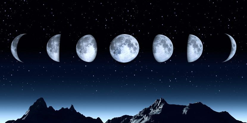 distintas fases lunares para sembrar