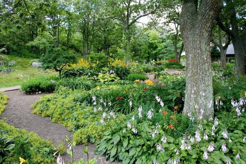Jardín exuberante