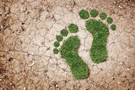 La conservación de suelos: prácticas agronómicas (parte I)
