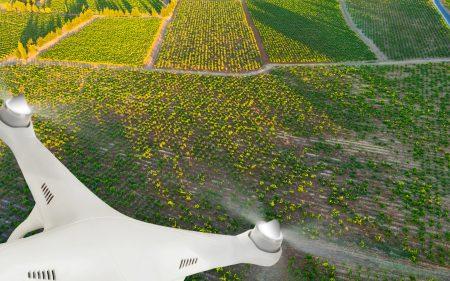 ¿Cómo las TIC complementan la agricultura de precisión?