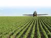 ¿Que es la agricultura de precisión?