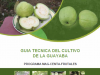 Guia Tecnica del Cultivo de Guayaba