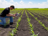 Agromatics: optimizing agriculture using informatics tools