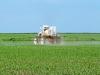 Las claves para diseñar una estrategia de control químico de malezas en frutales