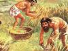 El origen de la agricultura y la Revolución del Neolítico