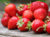Proteja el suelo en cultivo de fresas