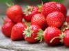 Optimizacion de la fertirrigacion en el cultivo de fresa en invernadero