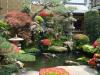 Cómo crear un microclima en el jardín