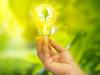 Un lámpara genera electricidad a través de la fotosíntesis