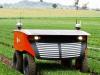 Desmalezadores robóticos: ¿una granja cerca de ti?