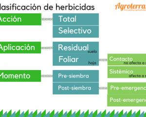 Clasificacion de los herbicidas