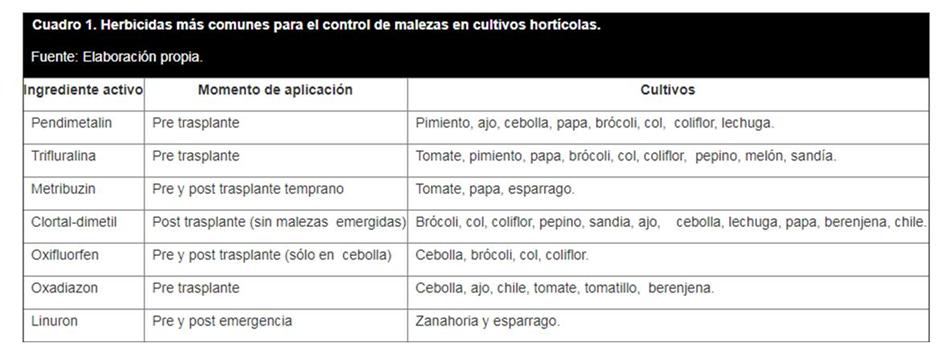 Control de malezas en hortalizas