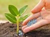 Como la nanotecnologia puede ayudar a crecer mas alimentos utilizando menos energia y agua?