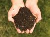 El uso del compost mejora la fertilidad y la capacidad retencion agua en el suelo agricola