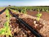 La fertirrigacion como tecnica eficaz de agronutricion