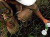 Riego de precision:  Cuanta agua necesitan los cultivos?