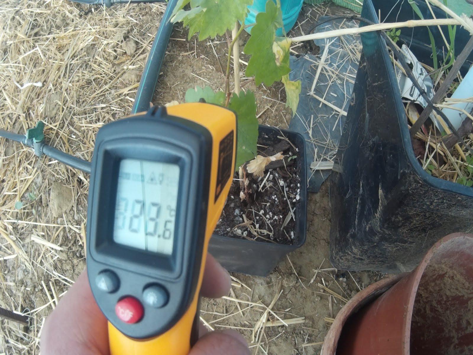 El rango de temperatura diaria es un factor en la salud del suelo