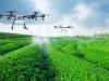 Aplicaciones operativas de los drones en Agriculturas de precisión
