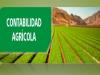 Conceptos basicos de contabilidad agricola