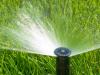 Inocuidad del agua del riego: Elemento clave de las Buenas Practicas de Manejo