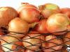 LA CEBOLLA: Características Morfológicas, Fertilización y Cosecha