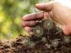La importancia de la materia organica en el suelo