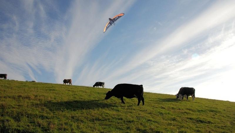 Para que usar drones en ganaderia
