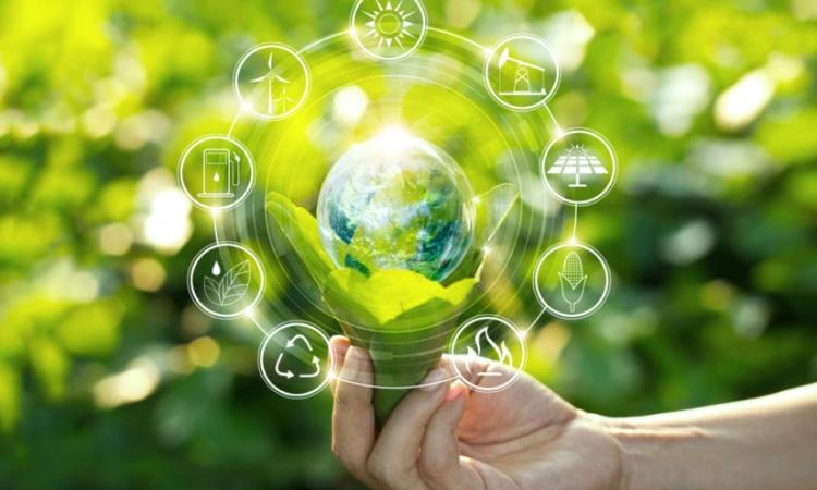 Ventajas y desventajas del desarrollo sostenible